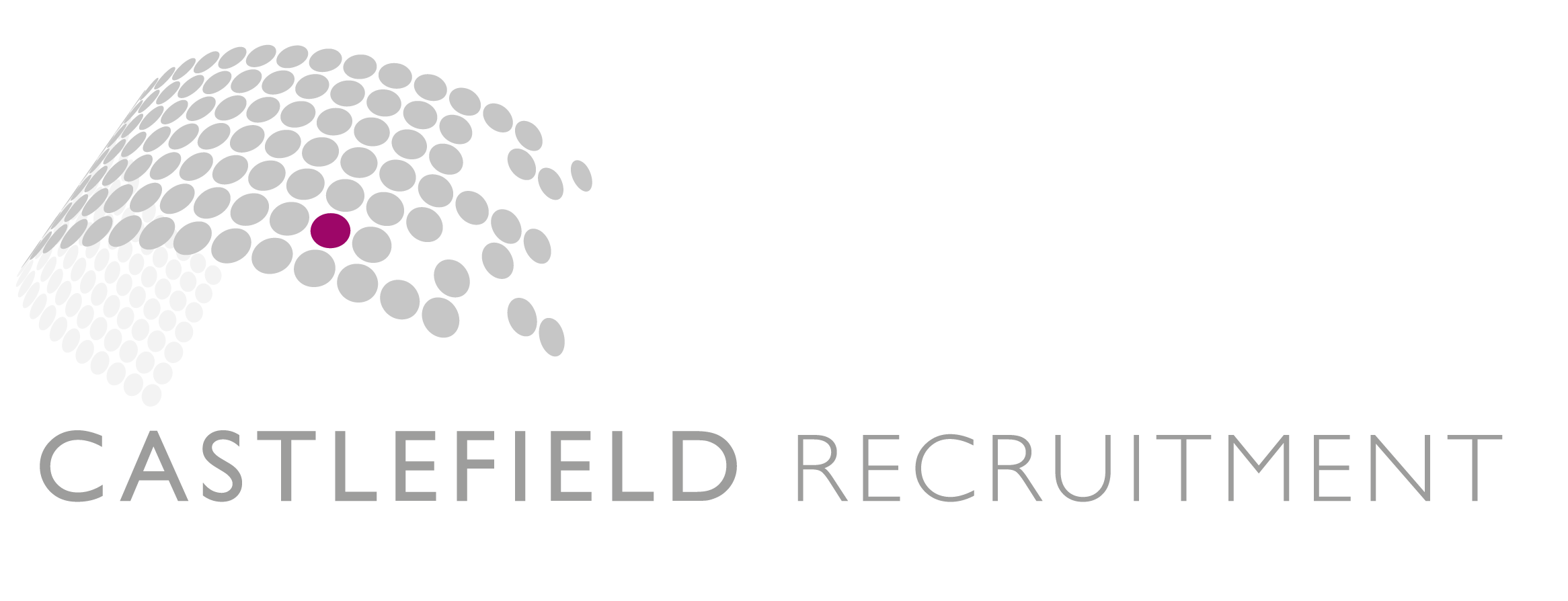 Castle Recruitment Logo png